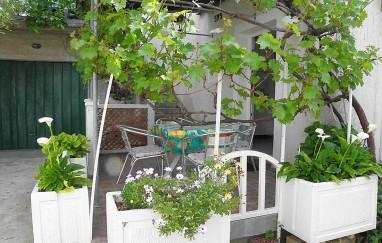 Apartmani Edo (Skvorc Ines)