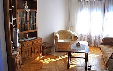 Apartment Surlina 1